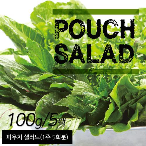 [무료배송] [굳닭] 파우치샐러드 (1주*5회분)5팩